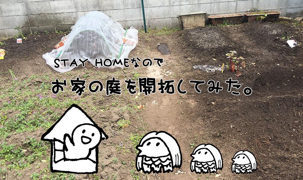 お家の庭を開拓してみた。