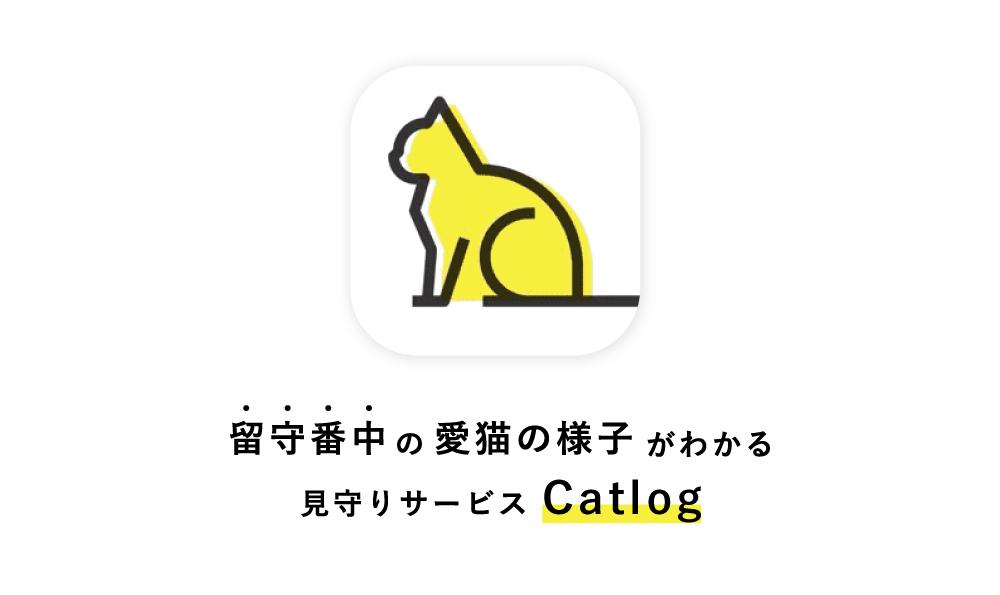 留守番中の愛猫の様子がわかる見守りサービスCatlog(キャットログ)を購入しました!